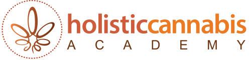 Holistic Wellness Practitioner